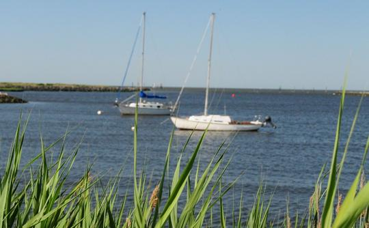 Boats near University of Delaware Marine Study campus